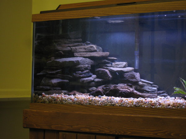 Bedroom in aquarium